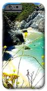 Beautiful Big Sur IPhone Case by Marin Packer