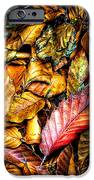 Beautiful Fall Color IPhone Case by Meirion Matthias