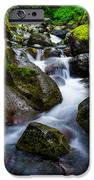 Below Rainier IPhone Case by Chad Dutson