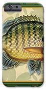 Blugill And Pads IPhone Case by JQ Licensing