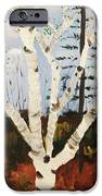 Brightest Birch IPhone Case by Suzanne  Marie Leclair
