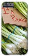 Bunches Of Onions IPhone Case by Teri Virbickis