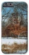 By Rattlesnake Creek IPhone Case by Denny Dowdy
