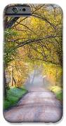Cades Cove Great Smoky Mountains National Park - Sparks Lane IPhone Case by Dave Allen