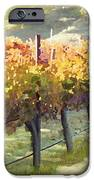 California Vineyard Series Morning In The Vineyard IPhone Case by Artist and Photographer Laura Wrede