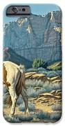Canyon Country Paints IPhone Case by Paul Krapf