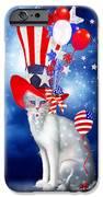 Cat In Patriotic Hat IPhone Case by Carol Cavalaris