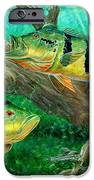 Catching Peacock Bass - Pavon IPhone Case by Terry Fox