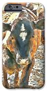 Cattle Round Up IPhone Case by Artist and Photographer Laura Wrede