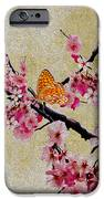 Cherry Blossoms IPhone Case by Cheryl Young