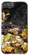 Color Of Change IPhone Case by John Rizzuto