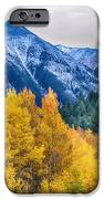 Colorful Crested Butte Colorado IPhone Case by James BO  Insogna