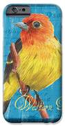 Colorful Songbirds 4 IPhone Case by Debbie DeWitt