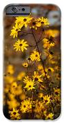 Colors Of Autumn IPhone Case by Sabrina L Ryan