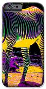 Colourful Zebras  IPhone Case by Aidan Moran
