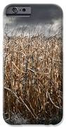 Corn Field Horror IPhone Case by Jt PhotoDesign