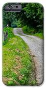 Country Road IPhone 6s Case by Frozen in Time Fine Art Photography