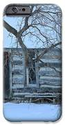 Cozy Hideaway IPhone Case by Penny Meyers