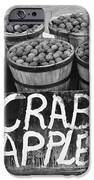 Crab Apples IPhone Case by Digital Reproductions