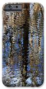 Cypress Reflection Nature Abstract IPhone Case by Carol Groenen