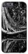 Cypress Roots - Bw IPhone Case by Christopher Holmes