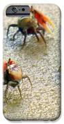 Dancing Of The Fiddlers IPhone Case by Karen Wiles