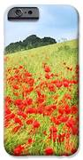Digital Art Field Of Poppies IPhone Case by Natalie Kinnear