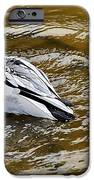 Diving Duck IPhone Case by Kaye Menner