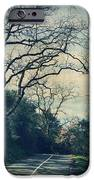 Down That Path IPhone Case by Laurie Search