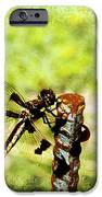 Dragonfly Eating Breakfast IPhone Case by Andee Design
