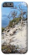Dunes Of Santa Rosa Island IPhone Case by JC Findley