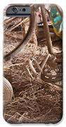 Dusty Memories IPhone Case by Jim Finch