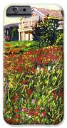 Early Evening At Cape Cod IPhone Case by David Lloyd Glover