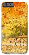 Empty Park On A Fall Day IPhone Case by Yoshiko Wootten