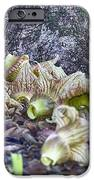 End-of-life V5 IPhone Case by Douglas Barnard