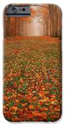Endless Autumn IPhone 6s Case by Photodream Art