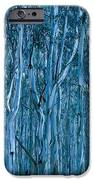 Eucalyptus Forest IPhone 6s Case by Frank Tschakert