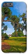 Evergreen Plantation II IPhone Case by Steve Harrington