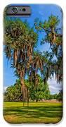 Evergreen Plantation IPhone Case by Steve Harrington