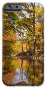 Fall At Valley Creek  IPhone Case by Rima Biswas