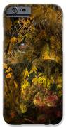 Fall Boxer IPhone Case by Judy Wood