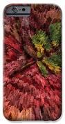 Fall Leaves  IPhone Case by John Farnan