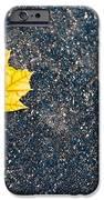 Fallen IPhone Case by Sebastian Musial