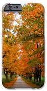 Falling For Country Farm IPhone Case by Lingfai Leung