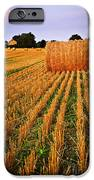 Farm Field With Hay Bales At Sunset In Ontario IPhone Case by Elena Elisseeva