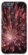 Fireworks For All IPhone Case by Terry Weaver