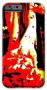Flamenco Passion IPhone Case by Sophie Vigneault