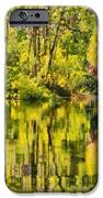 Florida Jungle IPhone Case by Christine Till