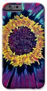 Flowerburst IPhone Case by Rory Sagner