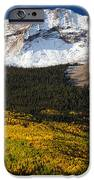 Foothills Of Gold IPhone Case by Darren  White
